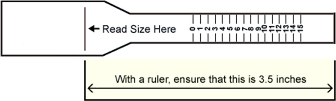 Read Size Here